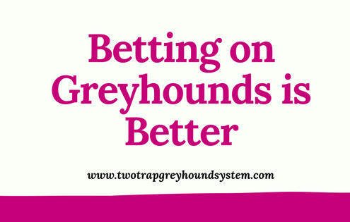 betting on greyhounds