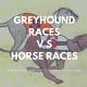 greyhound racing vs horse racing