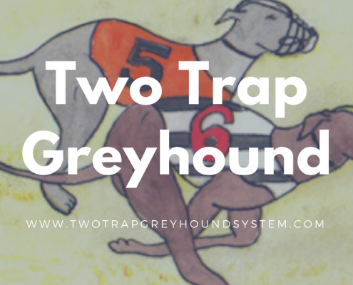 two trap greyhound