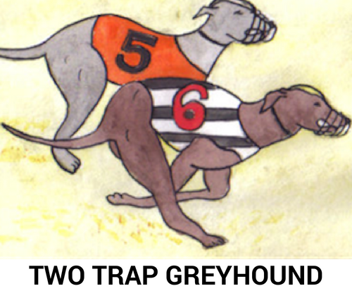 greyhound betting strategy