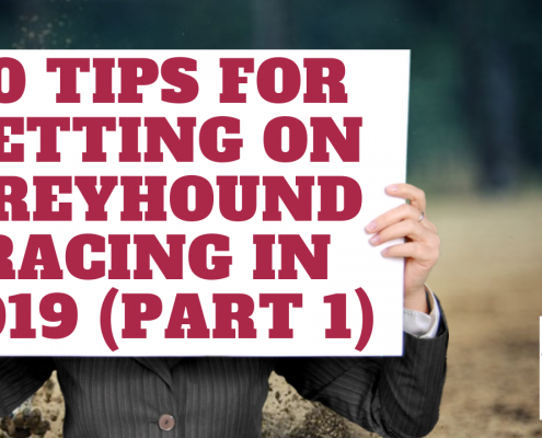 betting on greyhound racing in 2019