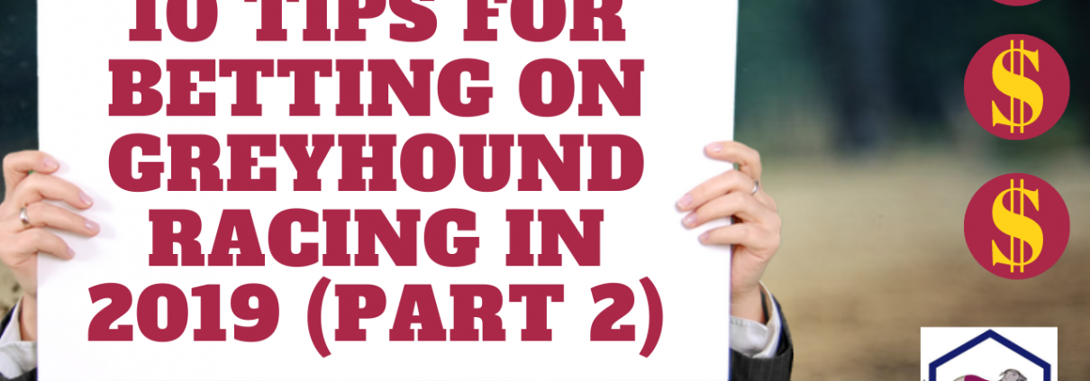 betting on greyhound racing