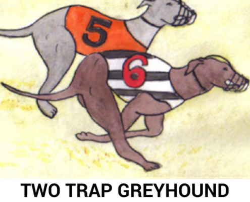 dog racing tips 2019