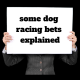 Some dog racing bets explained1